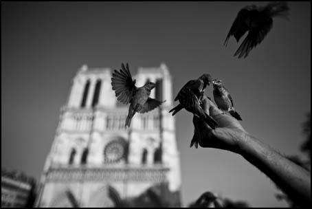 Paris_080919_0067_455